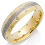 Canopus Meteorite with 18k Yellow Gold and 22 Diamonds